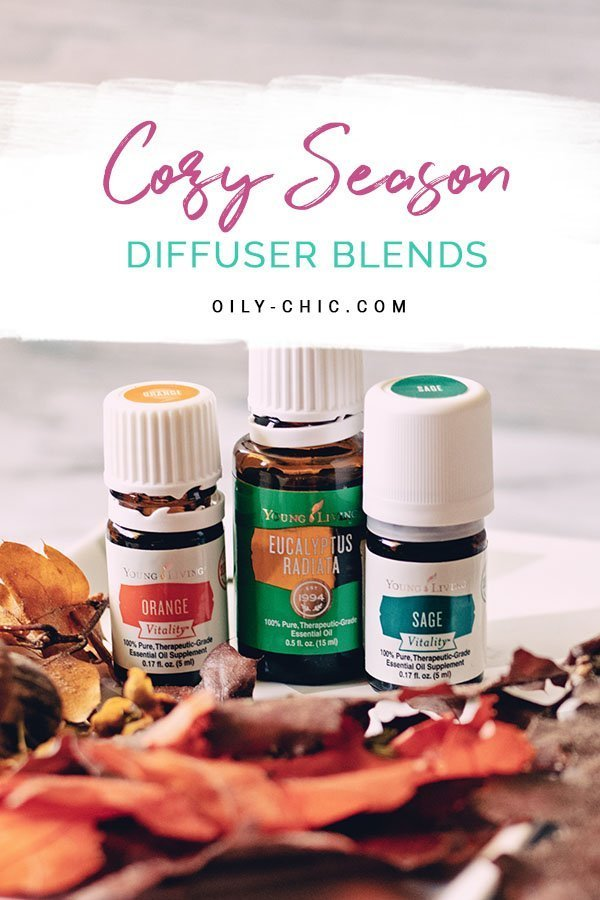 Nothing says COZY like the comforting scents of clove, juniper, cinnamon, cedarwood, orange, and cardamom. Find all our essential oil diffuser blends for the cozy season on the blog.